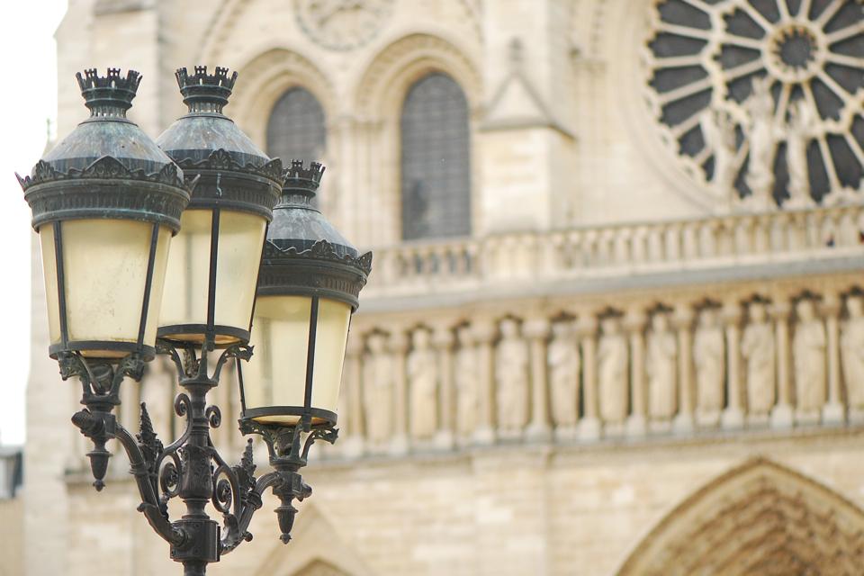 katedra-notre-dame