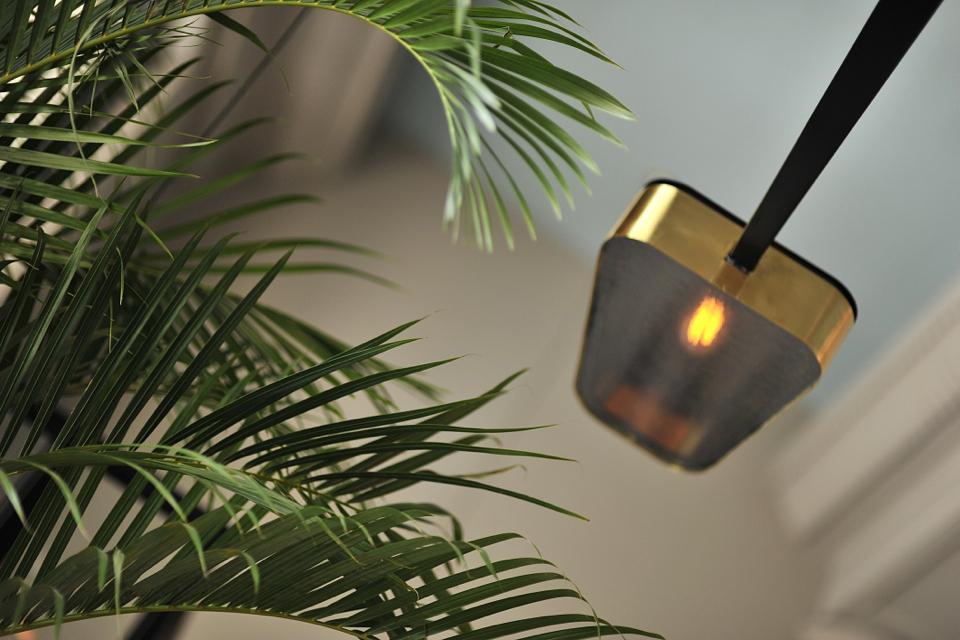 restauracja-palmier-żurawia
